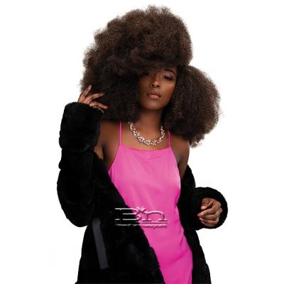 Janet Collection Synthetic Expression Braid - 3X KINKY CRUSH BULK 36