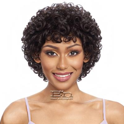 Vanessa 100% Human Hair Wig - HH LUCCA
